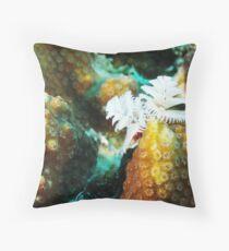 White Christmas Tree Worm in Bonaire Throw Pillow