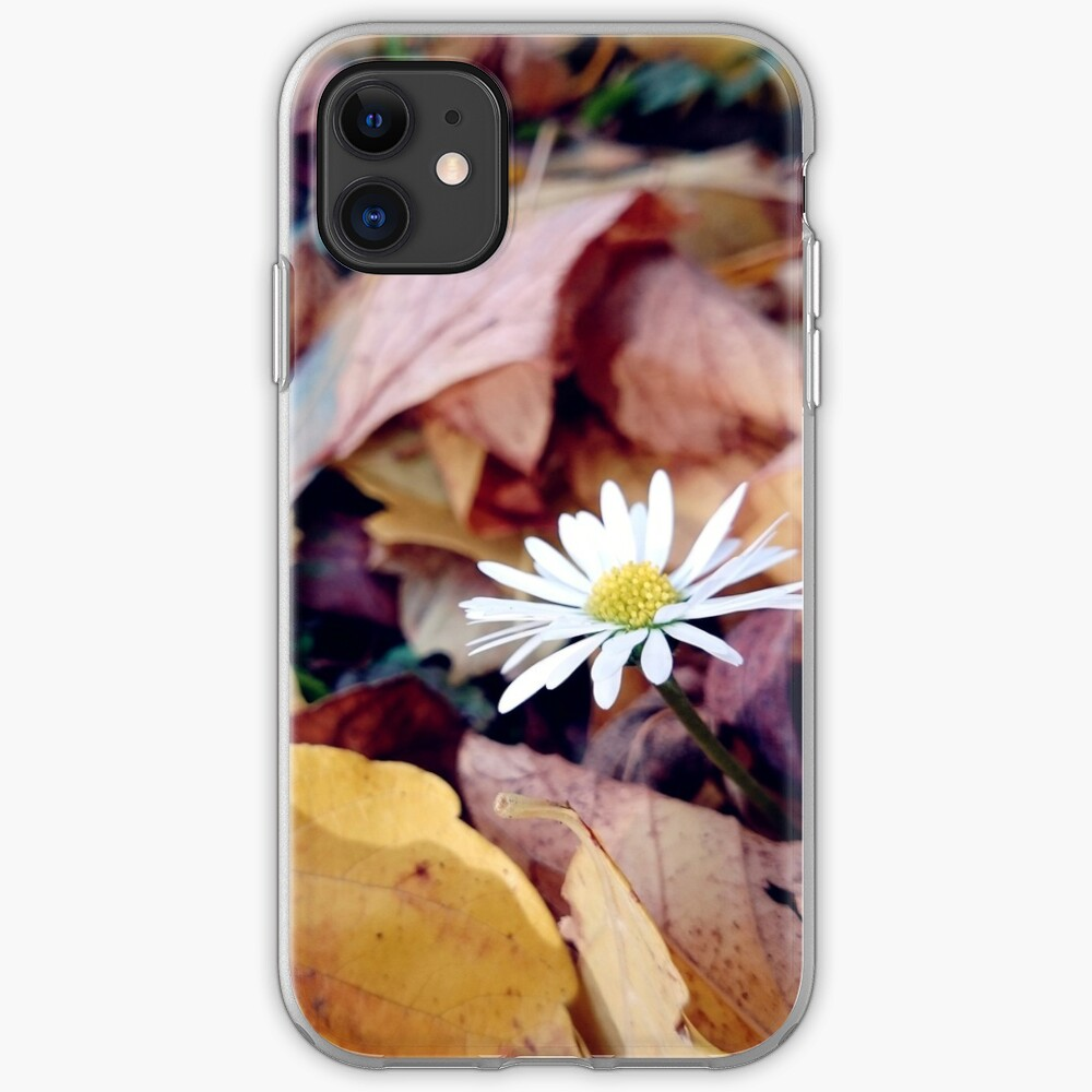Gänseblümchen im Herbst iPhone-Hülle & Cover