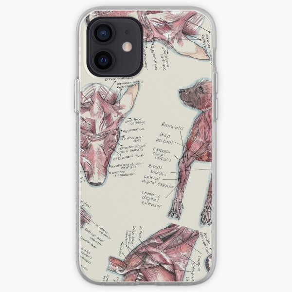 Canine Anatomy  Muscle iPhone Soft Case