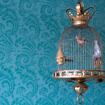 Decorative Bird Cage by aislingk
