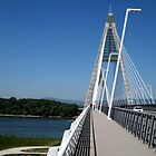 Megyeri.bridge.over.Danube.river_Hungary/Europe2011MAY07pic1 by ambrusz