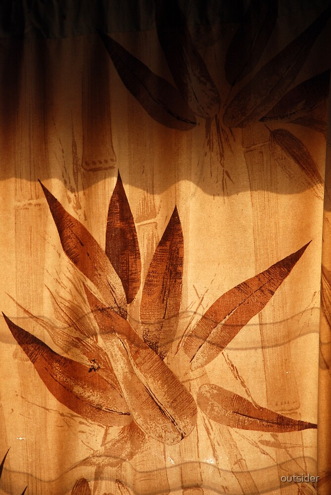 Behind The Bamboo Curtain... by outsider