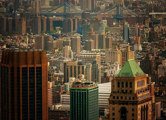 New York City Buildings and Skyline by Vivienne Gucwa