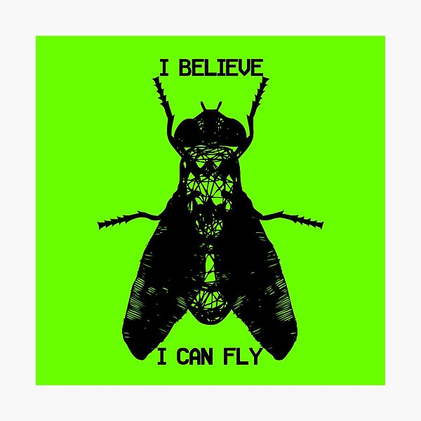 I Believe I Can Fly Photographic Print