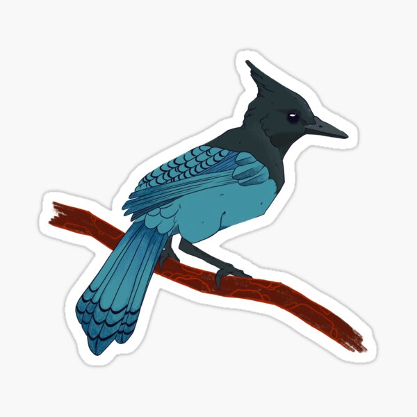 Stellers Jay Sticker