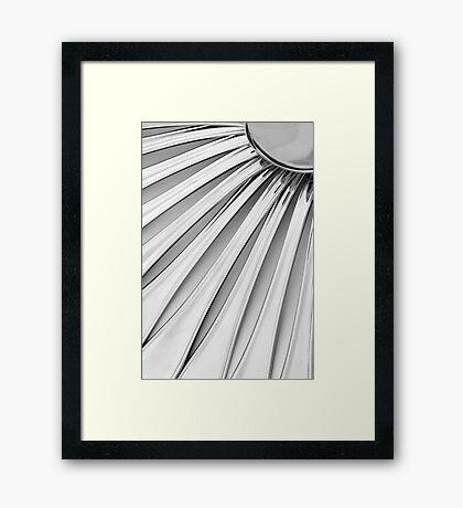 Spoons II Framed Print