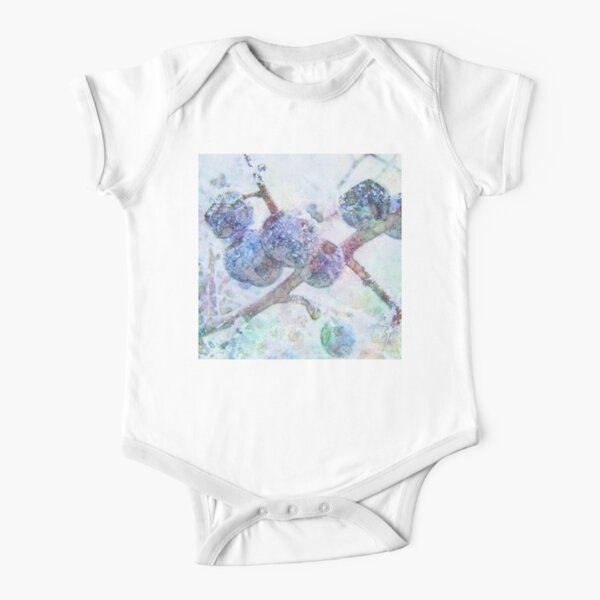 Vibrant Frost 1 Short Sleeve Baby One-Piece