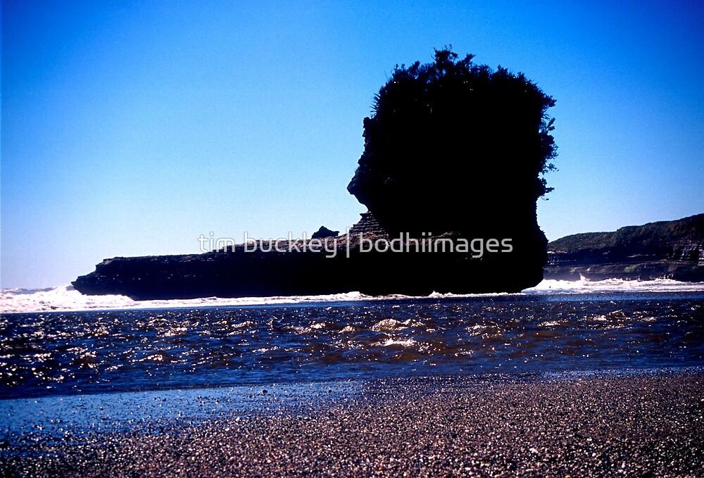 shag rock. punakaiki beach, aotearoa by tim buckley   bodhiimages