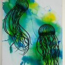 Jellyfish by Clare Lawrence