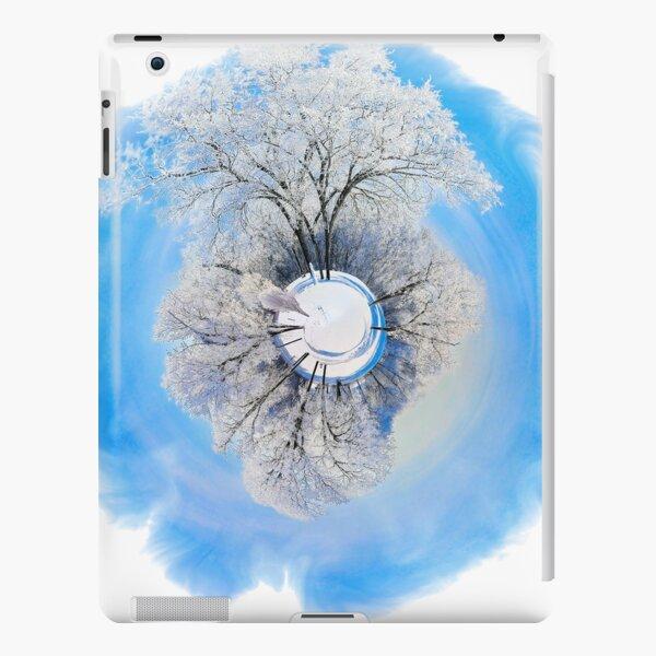 Winter World 1 iPad Snap Case