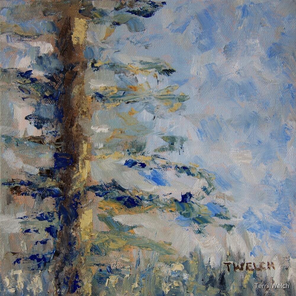 Fir Tree Sky  by TerrillWelch