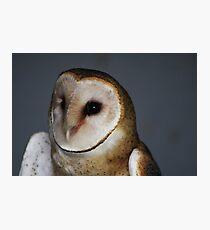 "Barn Owl - ""Casper"" Photographic Print"