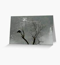 Skagit bald eagle Greeting Card
