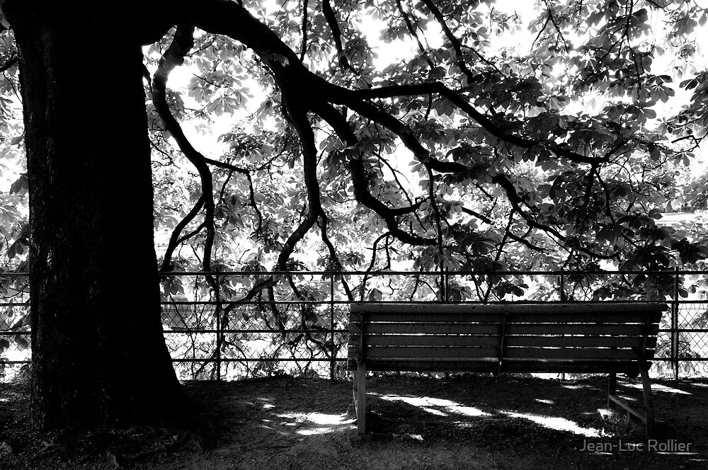 Paris - Foliation by Jean-Luc Rollier