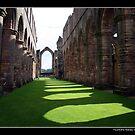 Fountains Abbey by John Dalkin