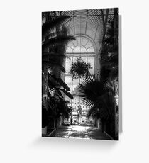 The Palm House - Kew Gardens Greeting Card