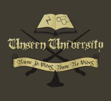 Harry Potter at Unseen University