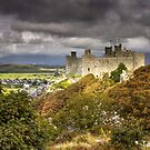 Snowdonia - Harlech Castle Autumn by Angie Latham
