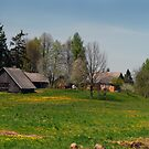 Spring in old farmstead (Yellow house) by Antanas