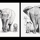Elephant Walk by BrandyHouse