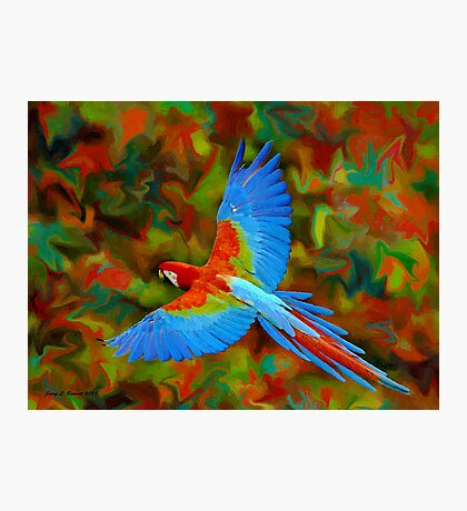 Flying Parrot Photographic Print