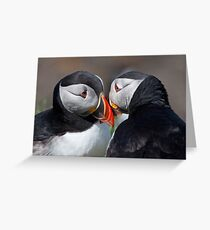 Eye to eye contact! Greeting Card