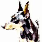 Painter's Doberman by c painter