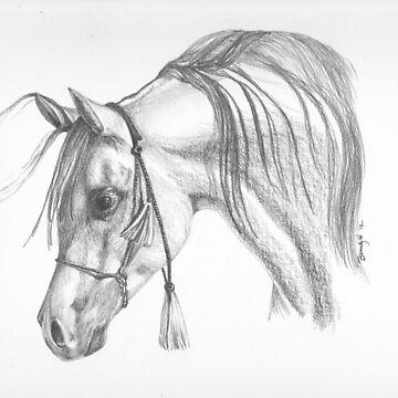 Arabian  by BrandyHouse