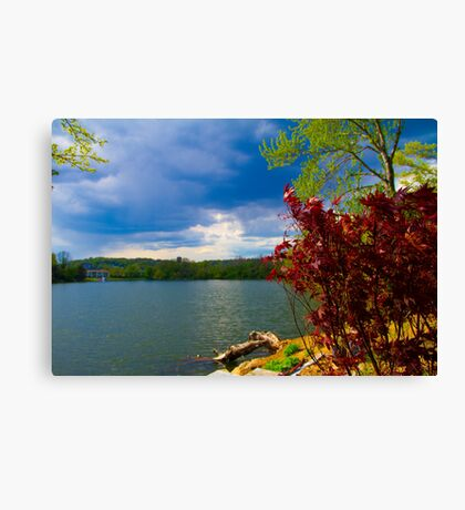 Save The Lake Canvas Print