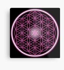 The Pink Flower of Life  Metal Print