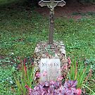 Grave with purple wildflowers by bubblehex08