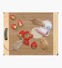 Strawberries and Cream Delight Photographic Print