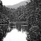 Clover Waters by Jane Keats