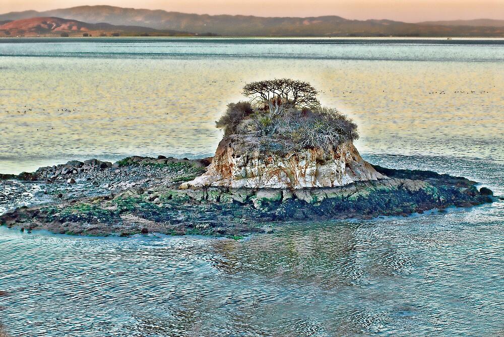 Bay Island by vincefoto