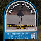 Emu Road sign - Northern New South Wales von 3Cavaliers