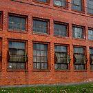 Forgotten Windows by Alissa Slagle