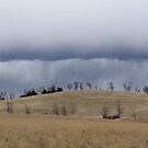 Clouds Roll In - My Hill by Alissa Slagle