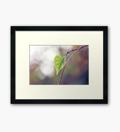 Sign Love From Nature Framed Print