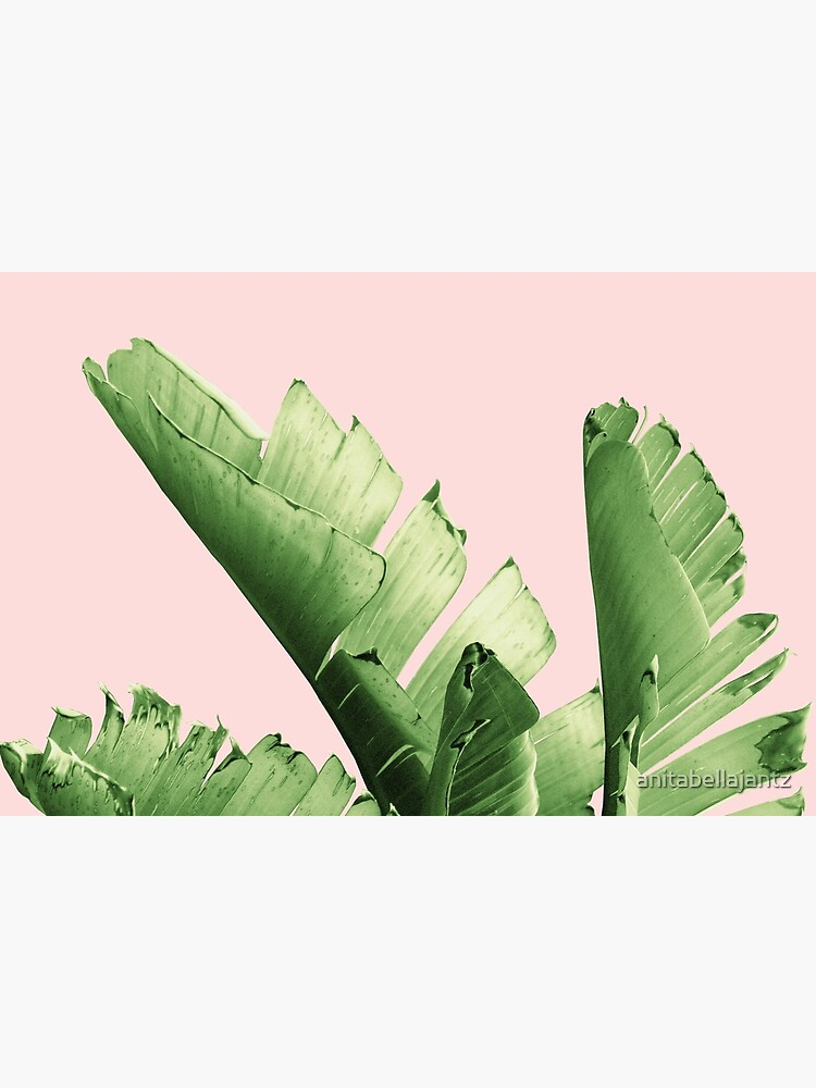 Blush Banana Leaves Dream #12 #tropical #decor #art by anitabellajantz