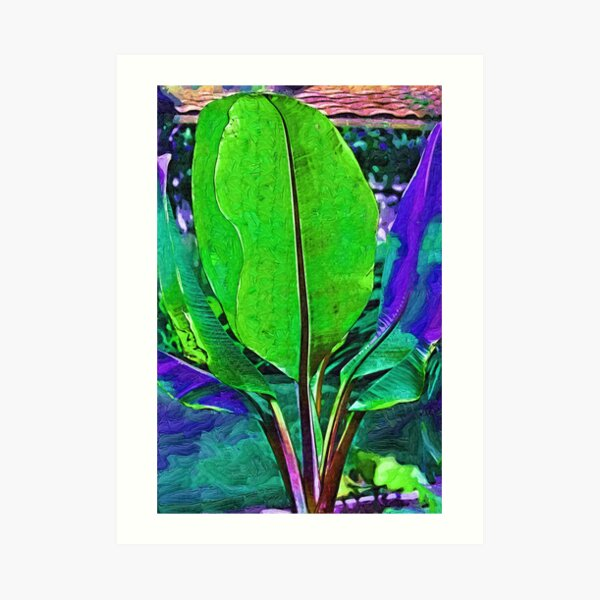 Abstract Banana Plant Art Print