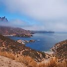 Foggy bay by Richard G Witham