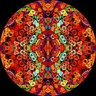 Chandni Chowk Mandala by Richard H. Jones