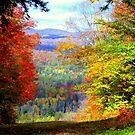 Glorious Autumn ! by Elfriede Fulda