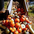 Autumn & Pumpkins (for a challenge) by Elfriede Fulda