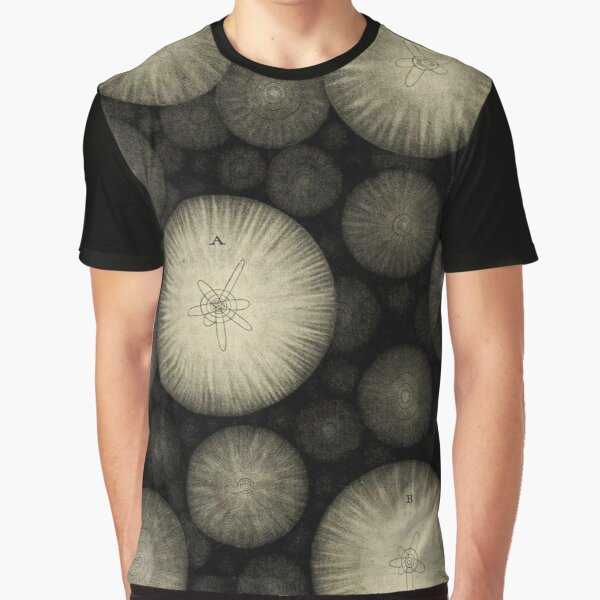 Plate 17 Graphic T-Shirt
