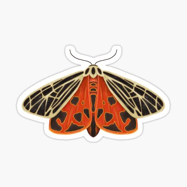 Parthenice Tiger Moth  Sticker