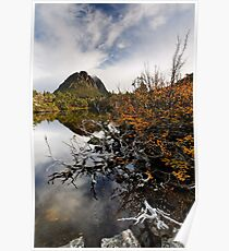 Twisted Fagus on Twisted Lakes Poster