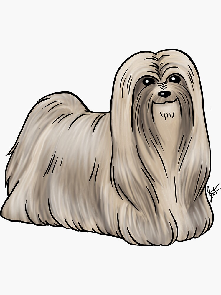 Lhasa Apso by jameson9101322