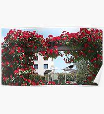 Enchanting garden  Poster