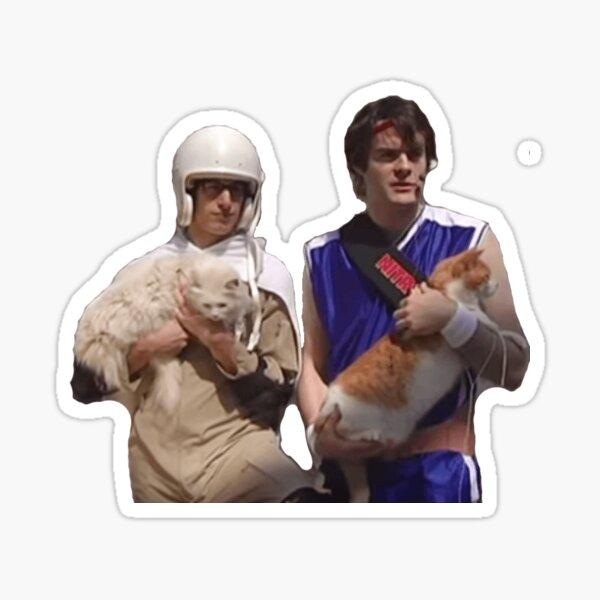laser cats Sticker